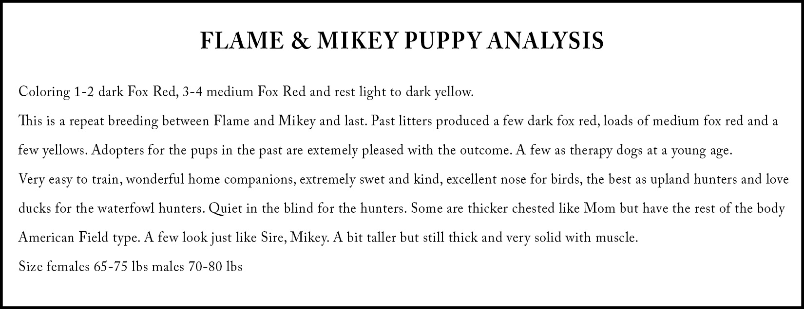 Puppy Analysis