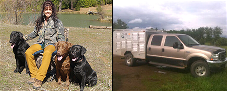 Labrador Breeder  Labrador Dogs Oregon, California