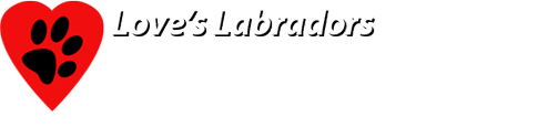 Labrador Breeders Oregon